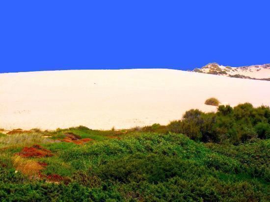 Guincho Beach: Dune formate dal vento al Guincho