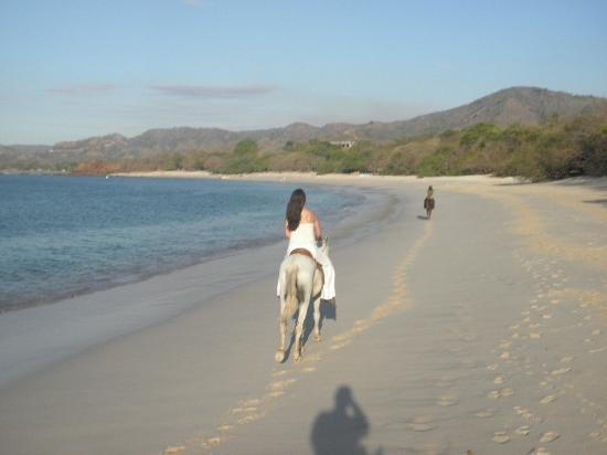 Playa Conchal: Playa Conchal horseback riding