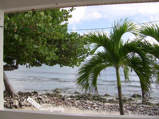 Paradise Villas: VIew from back porch of villa