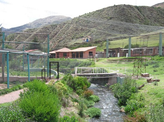 Santuario Animal de Cochahuasi: The sanctuary stretches across the river with lots of open room