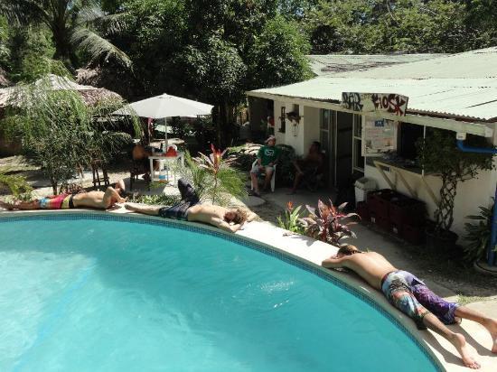 Pura Vida MiniHostel - Santa Teresa : pool