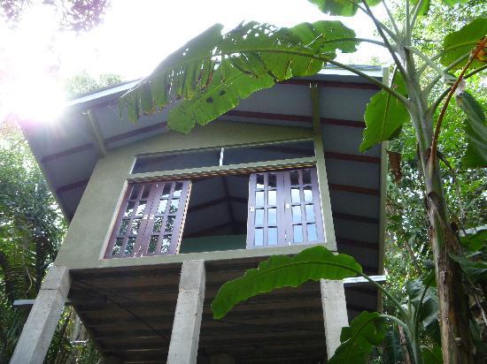 Luz en el Cielo Eco-B&B/Hostel 사진