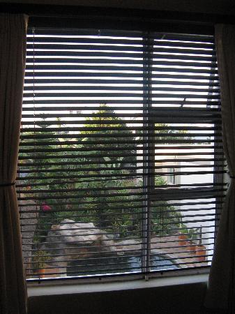 Atlantic Breeze: vista dalla finestra