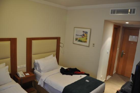 Hotel Misk : Room from desk