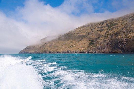 Akaroa Sea Ventures
