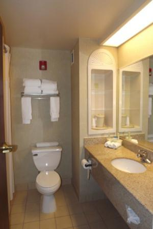 Holiday Inn Express & Suites Salamanca: Bathroom