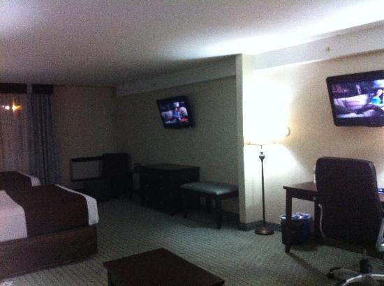 Coast Lethbridge Hotel & Conference Centre: TVs