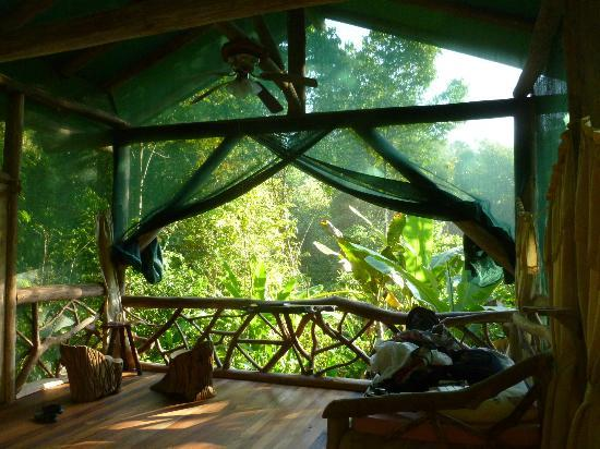 Danta Corcovado Lodge: Morning view from Galvin cabin
