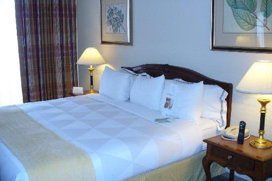 Four Points by Sheraton San Jose Airport: King Bed Room