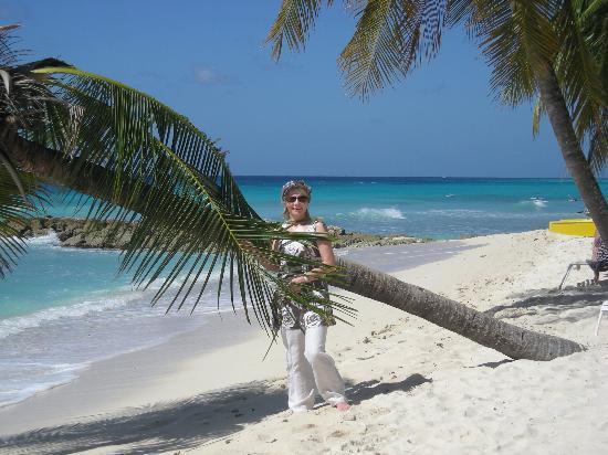 Barbados Beach Club: the beach