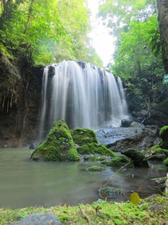 Comunidad Agroecologica Juanilama : Waterfalls in Juanilama Reserve