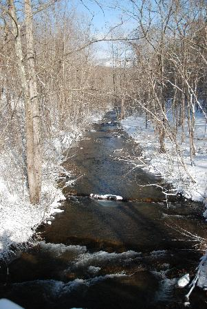 Mountain Rose Inn: View of the Creek from Bridge