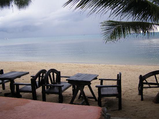 ساند سي ريزورت آند سبا: view from the restaurant