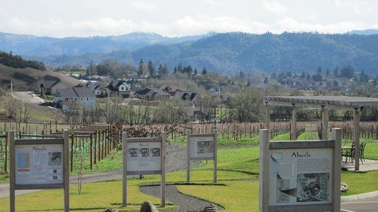 Roseburg, OR: Vineyard tour at Abacela