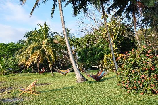 Hotel Amor de Mar: lying on the hammocks for sunrise