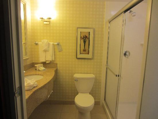 Hilton Garden Inn Riverhead: The bathroom