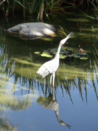 Sheraton La Jolla Hotel: garden path by fish lagoon