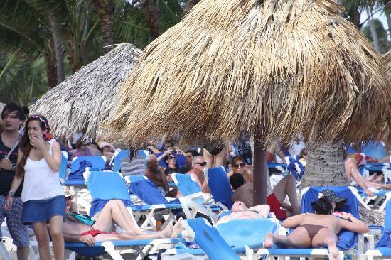 Grand Bahia Principe Bavaro: Playa llena de reposeras