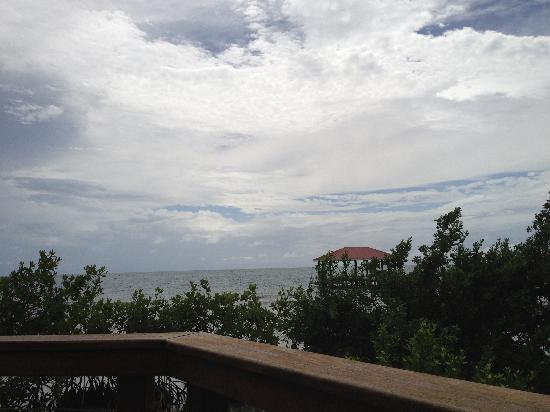 Hatchet Caye Resort : View off our balcony