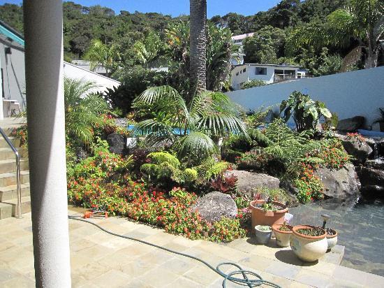 Paihia Pacific Resort Hotel: the pool plantings