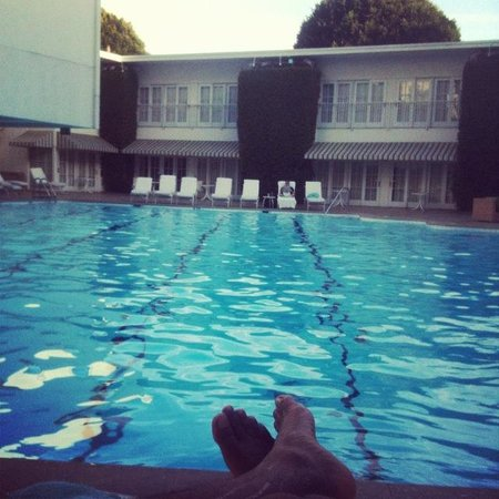 The Beverly Hilton : Pool
