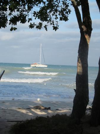 Negril Relax: Tri This catamaran-ready for a sail