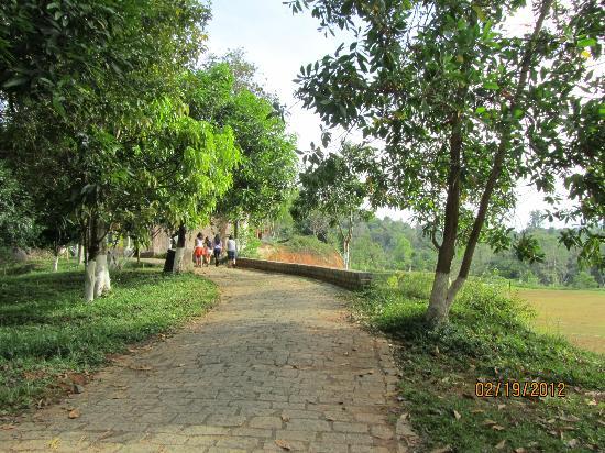 Madagui Forest Resort: path