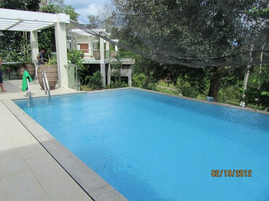 Madagui Forest Resort: private pool for VIP villa