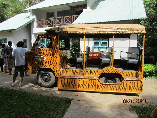 Madagui Forest Resort: Safari coach :)