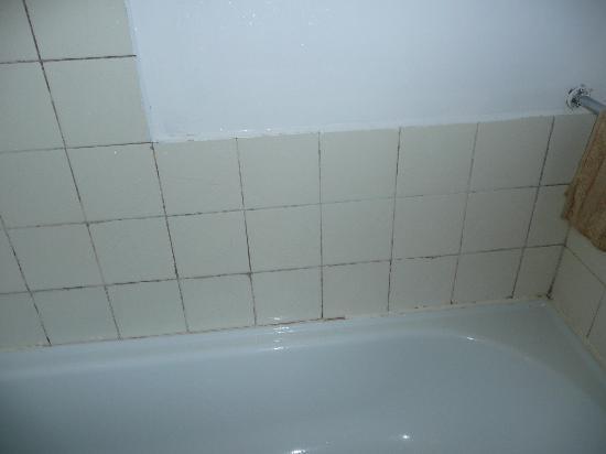 Achilles Motel : Filthy Shower