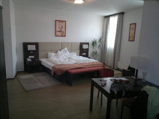 Ankora: Room