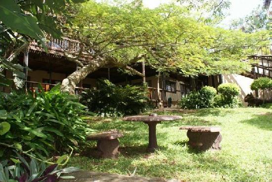 Ndiza Lodge and Cabanas: Garden