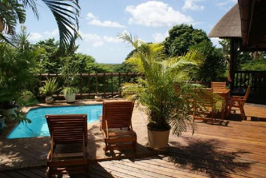 Ndiza Lodge and Cabanas: Splash pool on deck