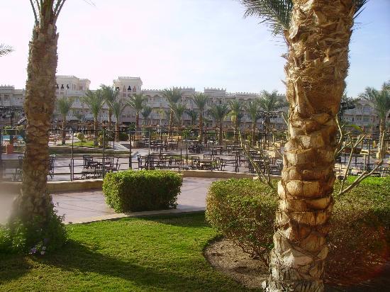 Albatros Palace Resort: it looks like that