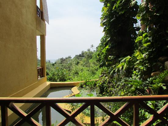 Barberyn Beach Ayurveda Resort: View from room 08