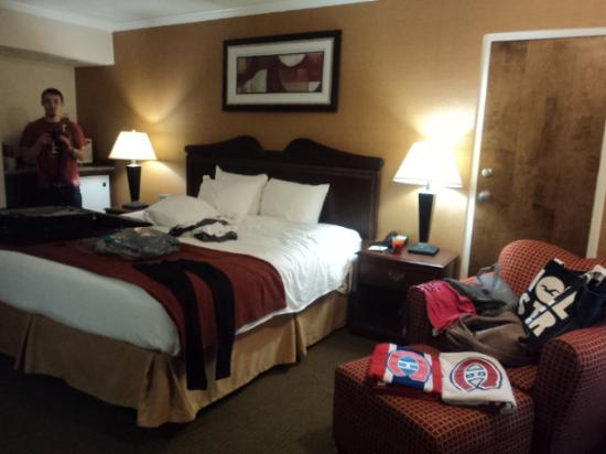BEST WESTERN PLUS Galleria Inn & Suites: bed