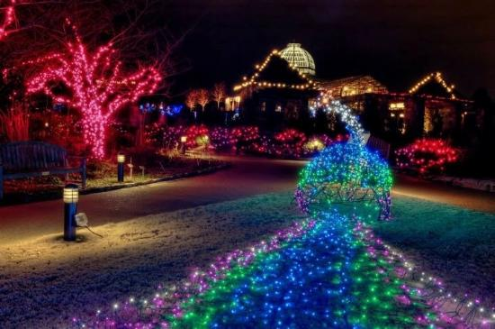 Christmas lights show - Picture of Lewis Ginter Botanical Garden ...