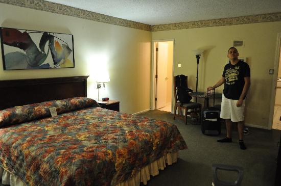 Hollywood Orchid Suites: la nostra camera (n. 101)