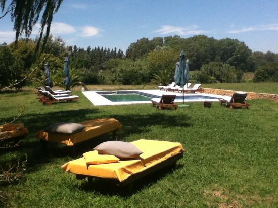 Casa Los Jazmines: Pool