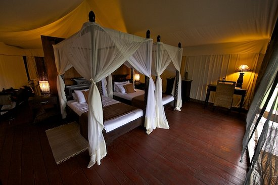 Lake Manyara Wildlife Lodge: Zelteingang