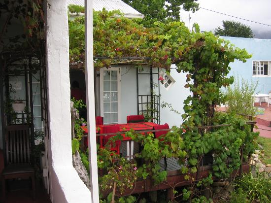 Impangele B and B & Self Catering Cottage: count the sunbirds
