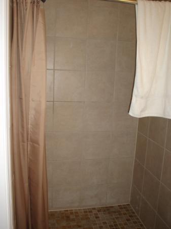 The Baron Hotel: Shower