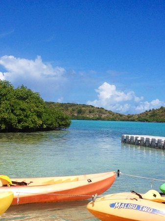 Saint Philip Parish, Antigua: ready ! get set ! Paddle !!!!!