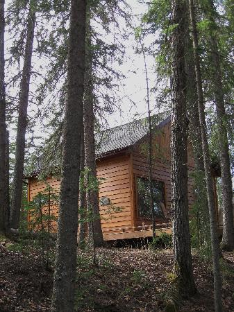 Deer Valley Bed & Breakfast: The Cottage in the Forest!