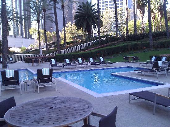 The L.A. Hotel Downtown: Pool