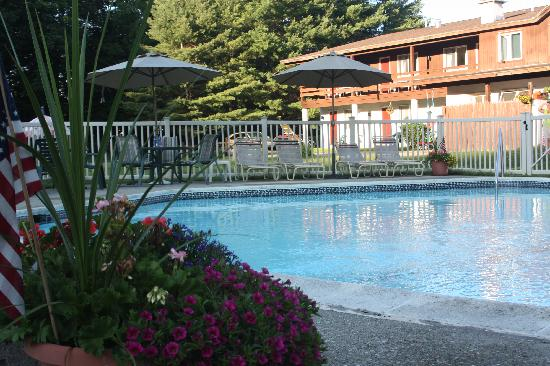 Olympia Lodge: Relax by our beautiful sparkling heated pool.