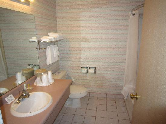 Comfort Inn & Suites Sea-Tac Airport: ok bathroom