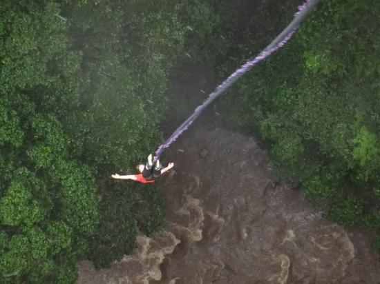 Tropical Bungee: Jump