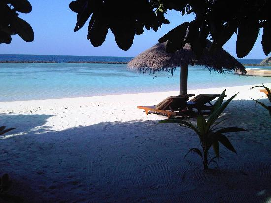 Baros Maldives: View from the back patio doors of our villa
