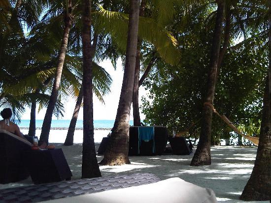 Baros Maldives: Bar area